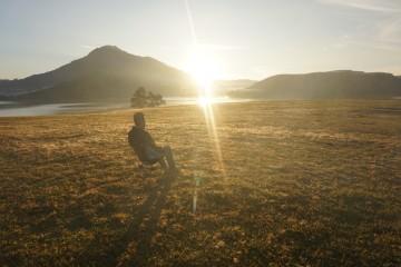Cây thông cô đơn - Hành trình không cô đơn