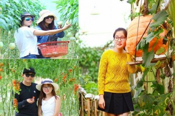 Tour du lịch nhà vườn hấp dẫn tại Đà Lạt