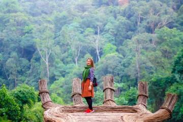 Hoa Sơn Điền Trang điểm đến mới lạ thu hút du khách ghé thăm tại Đà Lạt