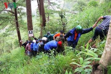 Du lịch mạo hiểm thác Datanla Đà Lạt bị tạm ngưng để kiểm tra sau khi một du khách Hàn Quốc tử nạn