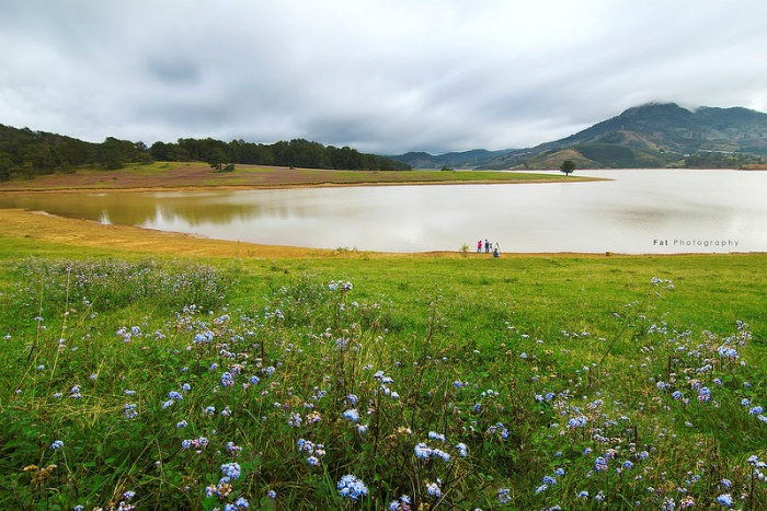 Hồ Dankia, Suối Vàng