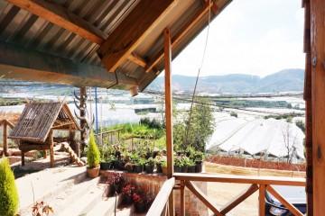 Bon Langbiang Village - Nơi thấm đẫm hơi thở núi rừng cao nguyên