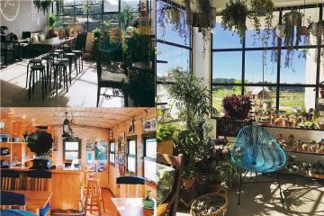 Top 5 cafe không thể bỏ qua khi du lịch Đà Lạt