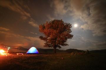 """""""Cây cô đơn"""" – Điểm cắm trại lí tưởng ở Đà Lạt"""