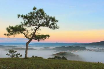Top những điểm đến tuyệt đẹp cho chuyến du lịch Đà Lạt của bạn