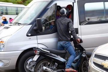 Thành phố Đà Lạt mở đường dây nóng để xử lý triệt để cò đặc sản