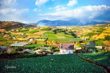 Đà Lạt lọt vào top những điểm hấp dẫn nhất Châu Á
