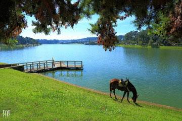 Những điểm đến tuyệt đẹp cho chuyến du lịch Đà Lạt tháng 4