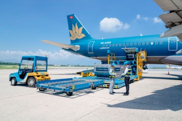 Đà Lạt sắp mở thêm nhiều đường bay quốc tế và nội địa