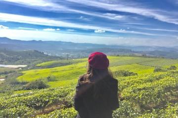 Tour Đà Lạt Trong Tôi 2 - Đồi Chè Cầu Đất