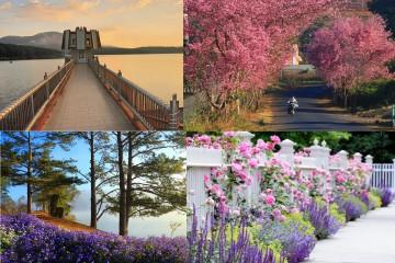 17 địa điểm du lịch hấp dẫn không thể bỏ qua ở Đà Lạt