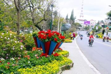 Đà Lạt sẵn sàng cho Festival hoa năm 2017