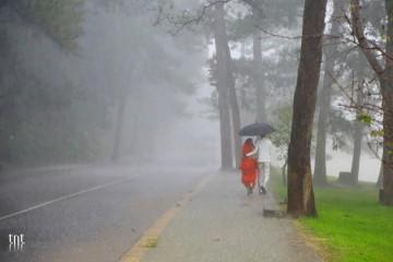 Mùa mưa này tôi hẹn em về Đà Lạt