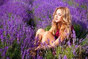 Sự tích hoa Oải hương