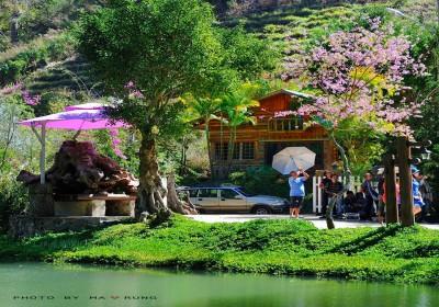 Top 5 điểm thiên nhiên không nên bỏ qua khi du lịch Đà Lạt